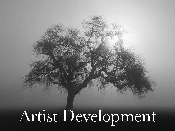 Creative Artist Development